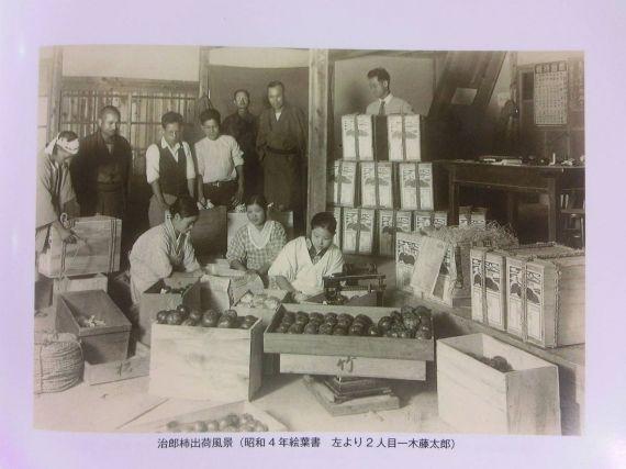 次郎柿 歴史