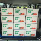 次郎柿を香港へ