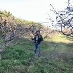 耕作放棄地の管理