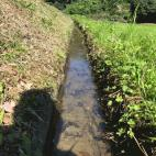 用水路の草刈り